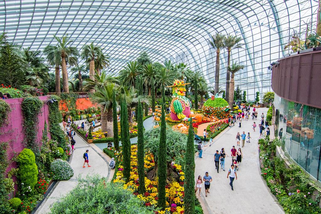 Hal yang Menyenangkan di Singapura Untuk Dilakukan